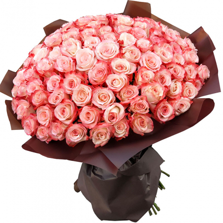 101 Ecuadorian rose 60 cm in stock photo
