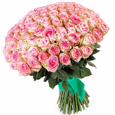 101 Ecuadorian rose 80 cm in stock photo