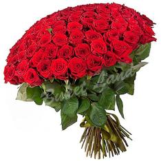 101 красная роза 1 метр фото