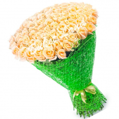 101 кремовая роза Vendella 60 см фото