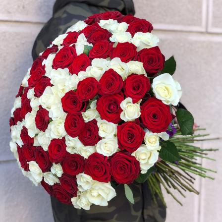 101 роза микс «красно-белая» 60 см фото