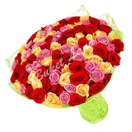101 роза микс «красно-желто-розовая» 60 см