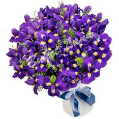 101 сине-фиолетовых ирисов фото