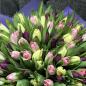 101 тюльпан микс (3 цвета) фото