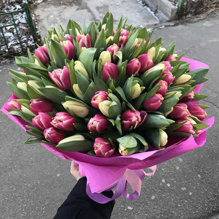 101 tulip mix in assortment photo