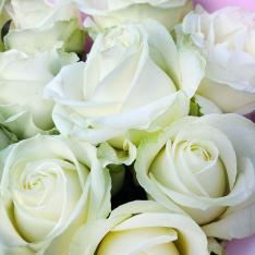 11 білих троянд 60 см фото