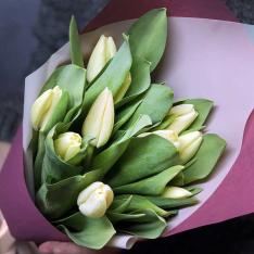 11 білих тюльпанів фото