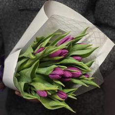 11 фіолетових тюльпанів фото