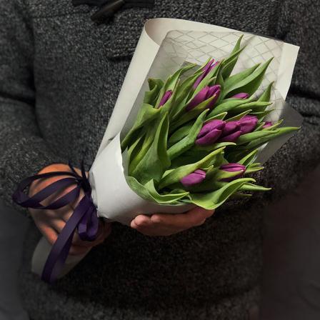 11 purple tulips photo
