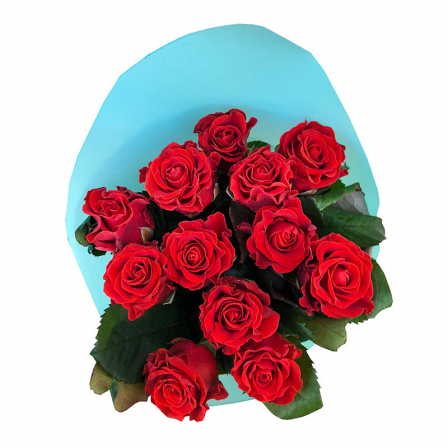 11 red roses 50 cm photo