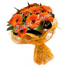 11 single-colored gerberas photo