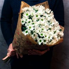 15 белых хризантем  фото