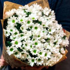 15 білих хризантем  фото