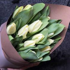 15 білих тюльпанів фото