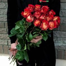 15 эквадорских роз Игуаза 80-90 см фото