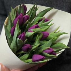 15 фіолетових тюльпанів фото