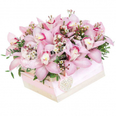 15 орхидей в коробке  фото