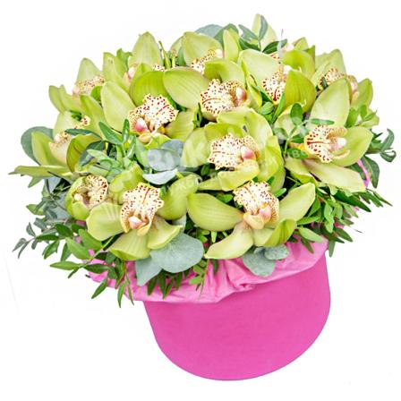 15 орхидей в шляпной коробке  фото