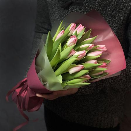 15 pink tulips photo
