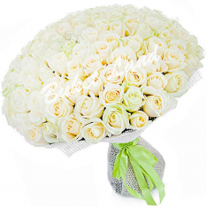 151 біла троянда Avalanche 60 см фото