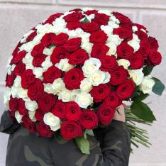 151 роза микс красно-белая 60 см фото