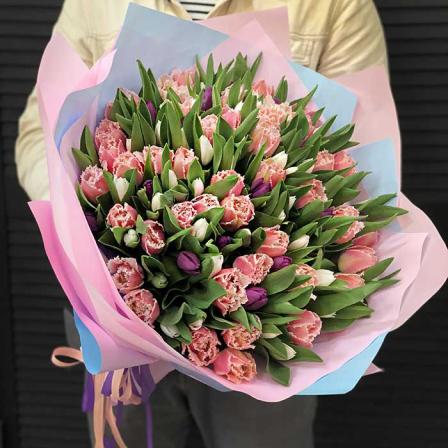 151 тюльпан в ассортименте фото