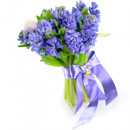 17 hyacinths in assortment photo