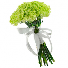19 carnations in assortment photo