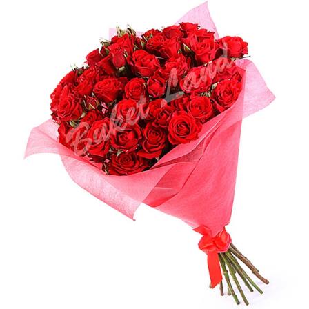 19 красных роз спрей 60 см
