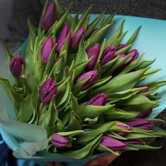 25 фіолетових тюльпанів фото