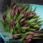 25 фиолетовых тюльпанов фото