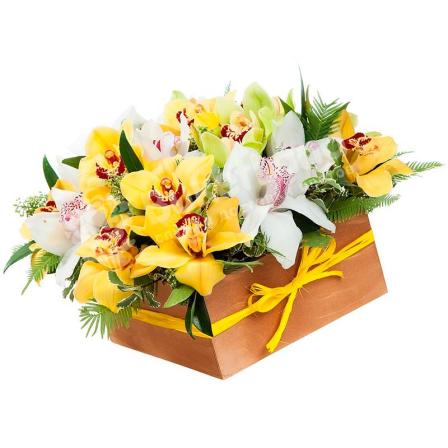 25 орхидей микс в коробке фото