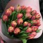 25 пионовидных тюльпанов в ассортименте фото