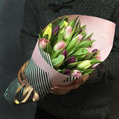 25 тюльпанів мікс (3 кольори) фото