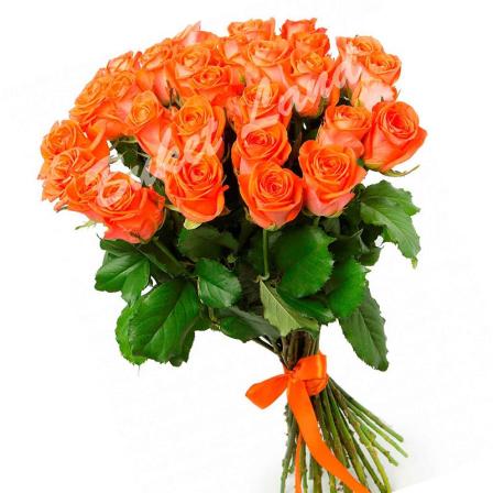 29 оранжевых роз Вау 60 см