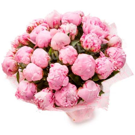 29 розовых пионов фото