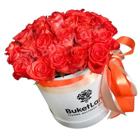 31 коралловая роза в шляпной коробке фото
