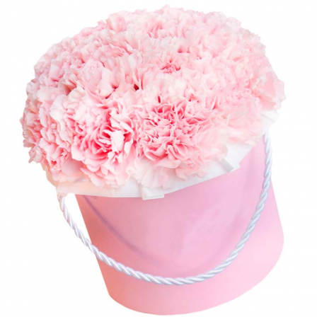 31 pink carnations in assortment photo