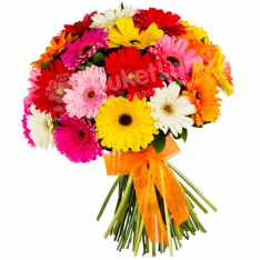 33 multi-colored gerberas photo