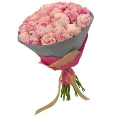 33 розовых пиона фото