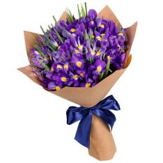 33 сине-фиолетовых ирисов фото