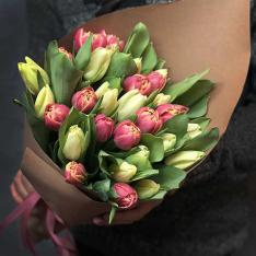 33 тюльпана мікс (2 кольори) фото