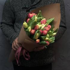 33 тюльпана микс (2 цвета) фото