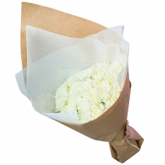 35 white carnations photo