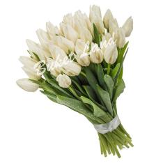 39 белых тюльпанов фото