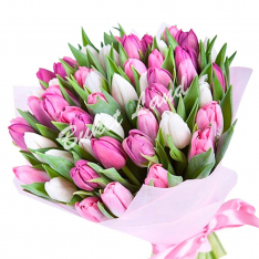 39 тюльпанов микс 2 фото