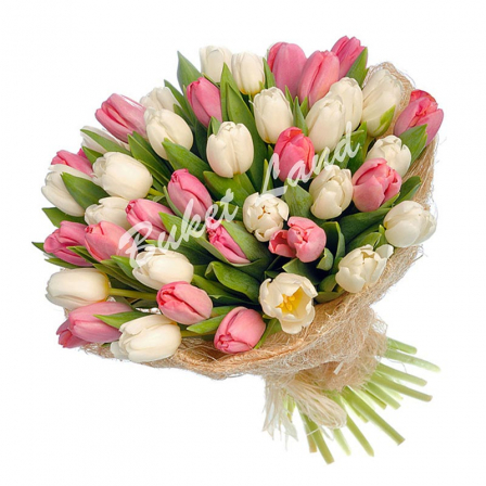 39 тюльпанов микс 3 фото