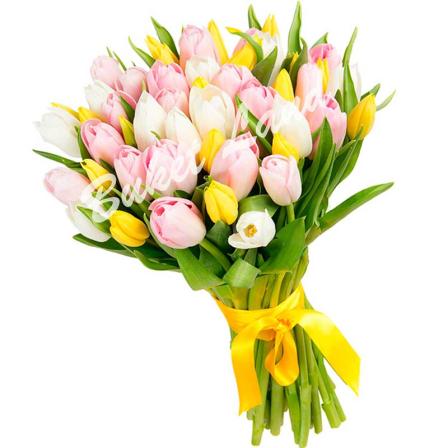39 тюльпанов микс «бело-желто-розовый» фото