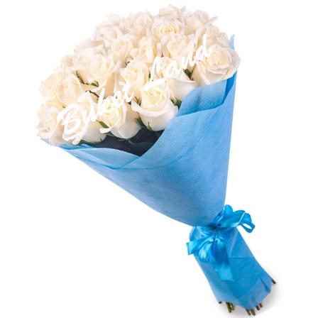 41 белая роза Аваланч 60 см