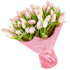41 розовый тюльпан фото